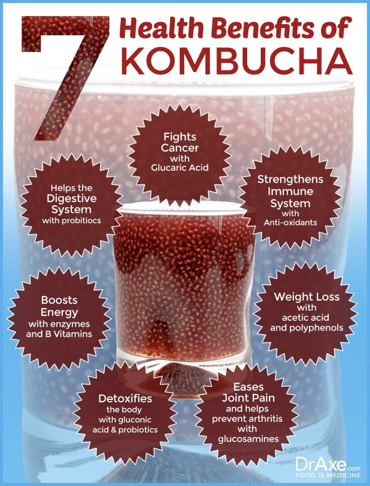 Health Benefits of Kombucha Infograph diagram
